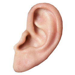 Ear-PNG-HD